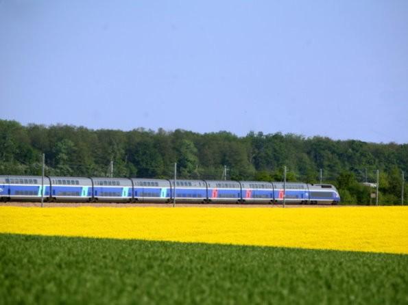 Bild: TGV auf der Fahrt nach Paris im Sommer