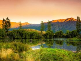 Wochenangebot: Neuseeland zum Kennenlernen
