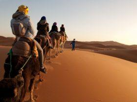 Marokko Busrundreise mit Avanti