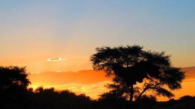 südafrika_sonnenuntergang