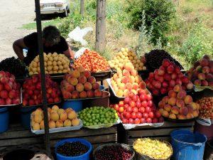 Georgien. Obststand an der georgischen Heerstraße bei Pasanauri