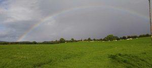 irland-wiesen-regenbogen