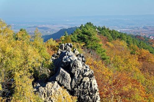 Natur Harz 2